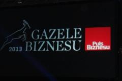 Gazele Biznesu 2013 r
